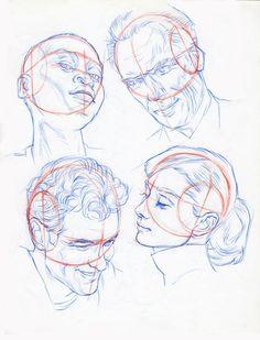 Anatomy Sketches, Anatomy Drawing, Art Drawings Sketches, Drawing Heads, Human Drawing, Figure Drawing Reference, Art Reference Poses, Human Anatomy Art, Face Anatomy