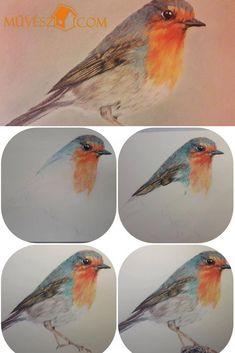 Rajz tutorials - Rajzok lépésről-lépésre - Kattints a linkre és olvasd el a teljes cikket! Bird, Animals, Water Colors, Animales, Animaux, Birds, Animal, Animais