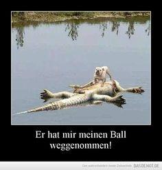 Er hat mir meinen Ball weggenommen!