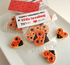 "Lovebug Valentine- fill with heart shaped lady bug cookies or any other ""buggy"" things (like bug silly bands)"