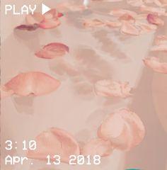 M O O N V E I N S 1 0 1 #vhs #aesthetic #water #petals #rose #pink #bathtub