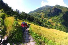 Trekking in Nepal promises adventure