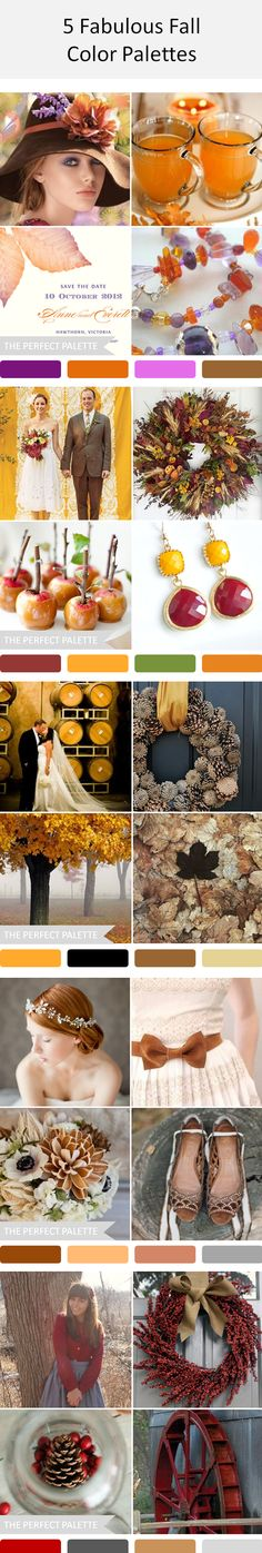 5 Fabulous Fall Color Palettes http://www.theperfectpalette.com/2013/09/5-fabulous-fall-color-palettes.html