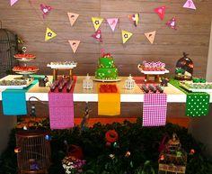Mesa para aniversário com tema festa Junina