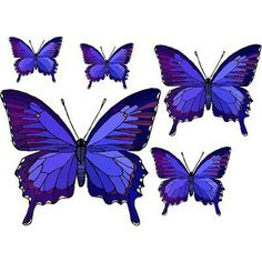 Set of 5 Blue Purple Butterflies Vinyl Stained Glass Film, Static... ($2.95) ❤ liked on Polyvore featuring home, home decor, art, butterfly window clings, vinyl window decals, butterfly stained glass, vinyl stained glass y vinyl window clings