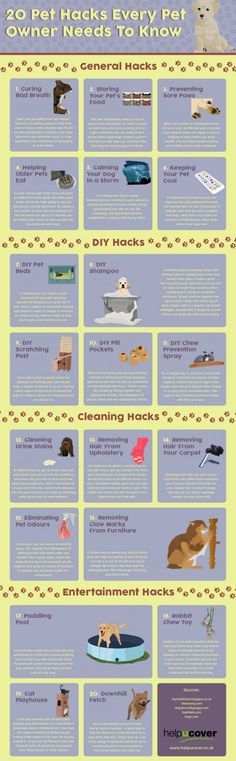 Pet Hacks Every Pet Owner Should Know