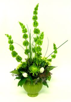 """You may know it as """"Erin Go Braugh,"""" but did you know that it's a salute to Ireland? For St. Patrick's Day we salute and celebrate Ireland with this floral design of Bells of Ireland, green hydrangea, white tulips and green fuji mums. $49.99"""