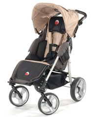 Special needs stroller. I think this might be it! :D