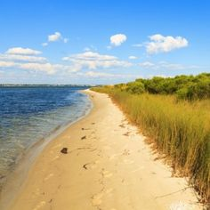 """Perdido Key, also referred to as the """"Lost Key,"""" is a small hidden gem actually located within the city of Pensacola. This town is the perfect spot for those who enjoy the beauty of nature. Beaches, parks, and wildlife preserves take up more than half of the area. Diving enthusiasts can also have an underwater adventure by exploring a sunken military ship."""
