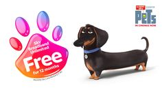 Choose a reward with one year free Sky Broadband Unlimited and Sky TV Bundles
