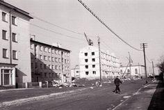 Tiigi 1961