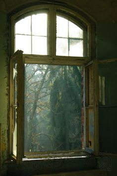 Abrir la ventana y agudizar todos los sentidos: la vista para apreciar la luz, las nubes, el paisaje...el olfato para oler la humedad, la tierra los aromas de las plantas...