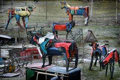 Récupération, carcasses de voitures, vaches, races bovines anciennes, sculpture, sculpture métal, photos Juha Metso