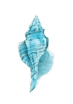 Digital Art - Conch by Randoms Print Watercolor Sea, Watercolor Illustration, Watercolor Paintings, Sea Life Art, Sea Art, Arte Inspo, Bild Tattoos, Seashell Painting, Nautical Art