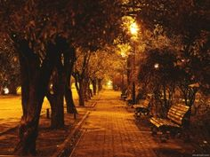 Night time stroll in Sukhum...some day soon!