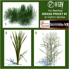 Vray Proxy Trees Free Download - tdpast