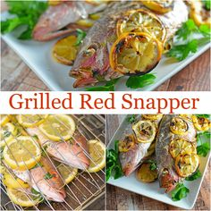 recipe: how to grill red snapper fillets on gas grill [33]