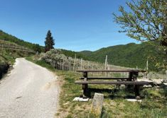 Berg, Austria, Country Roads, Hiking