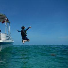 """""""I can fly!"""" #thriveinthesun - http://ift.tt/1HQJd81"""