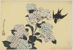 Katsushika Hokusai (Japanese, 1760–1849) - Hydrangeas and Swallow, from an untitled series known as Large Flowers, about 1833–34 (Tenpô 4–5). Edo period  | Museum of Fine Arts, Boston