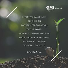 """""""Effective evangelism depends on faithful proclamation of the Word. God will prepare the soil and bring forth the fruit. We must be faithful to plant the seed."""" - John McArthur"""