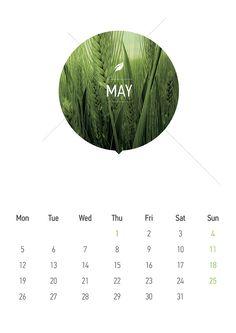 Calendar 2014 by Andrea Incardona, via Behance