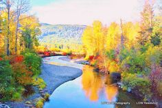 Nature Photography Reflection Photo River by LDTwedePhotography, $7.99