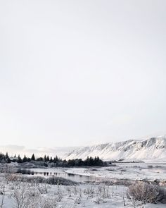 Iceland in winter |