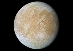 One of Jupiter's moons Europa, contains water, does this mean life can be found too?