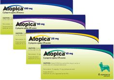 Staff Pick: Missy. Why: Atopica is a great option for hard to handle skin issues. Hailey has been on it since 2011!