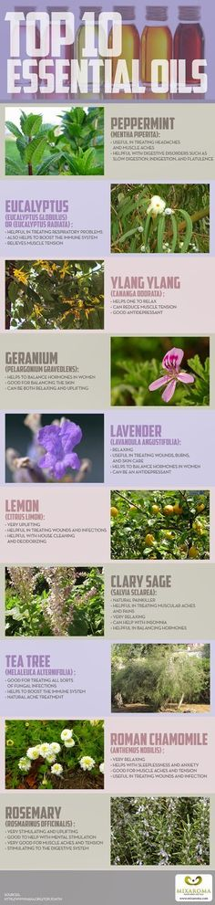 Top 10 Essential Oils Health and Beauty Benefits, Uses  and General Caution Regarding EO Use [Infographic]