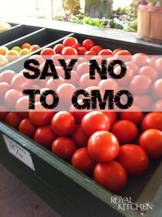 What are GMO's and How Can They Be Harmful to Your Family!