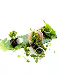 Escargot, Tippling Club