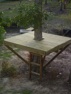 Simple design. Could use our fallen trees for railings. We don't even need a roof in the forest