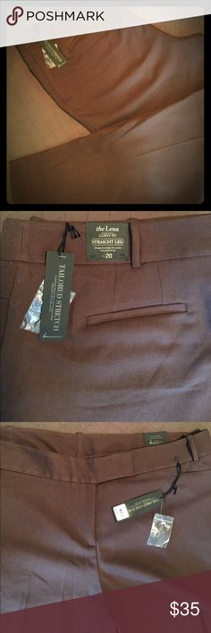 NWT-Lane Bryant Lena Dress Pants Chocolate brown and fabulous for Fall and Winter. Lane Bryant Pants Trousers