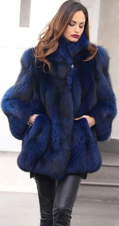 Beautiful Blue Fox