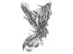 phoenix images - Google Search