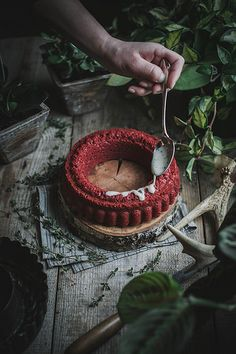all natural red velvet cake + goat cheese thyme icing (dyed with beets!) by Beth Kirby | {local milk}, via Flickr