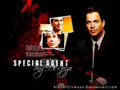 The Very Special Agent Tony Dinozzo
