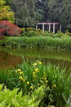 Old Westbury Gardens, Long Island NY