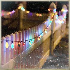 Christmas lights on fence and snow