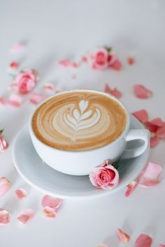 See what our first Springtime was like at SONDER Coffee in Denver Colorado, inspired by romantic florals, colors and flavors. Sunday Coffee, Good Morning Coffee, Coffee Break, But First Coffee, I Love Coffee, My Coffee, Bunn Coffee, Coffee Travel, Coffee Latte Art