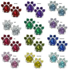 Paw Print Birthstone Earrings at The Animal Rescue Site