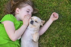 Dogs have been proven to be therapeutic and to lower depression rates, but are they also the key to helping a Highly Sensitive Child connect to the world?