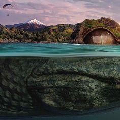 Digital Art Vision of Ecuador