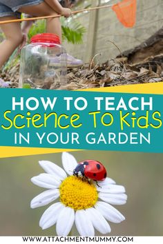 How to Teach Kids Science in Your Garden #homeed #homeschooling #learning #homeeducation Outdoor Education, Outdoor Learning, Home Learning, Stem Science, Science For Kids, Craft Activities For Kids, Preschool Activities, How To Teach Kids, Home Schooling