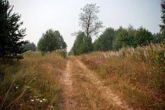 бывшая деревня Валявкино