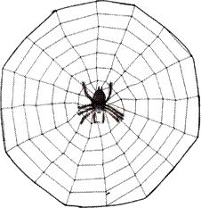 spider ideas and center games