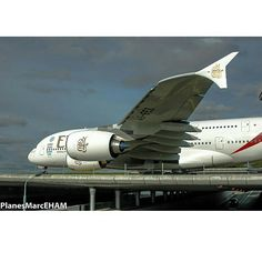 Etihad A380-800 airbuslover15's photo on Instagram