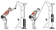 Exercise Database - Standing Cable Rope Lat Pushdown — Jase Stuart - The Better Body Coach Lat Workout, Gym Workout Tips, Triceps Workout, Back Cable Workout, Cable Machine Workout, Cable Back Exercises, Latissimus Training, Back And Shoulder Workout, Fitness Studio Training
